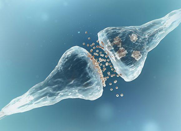 Γονιδιακός έλεγχος